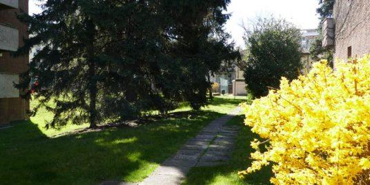 Ufficio/appartamento di 120mq Via Zamagna
